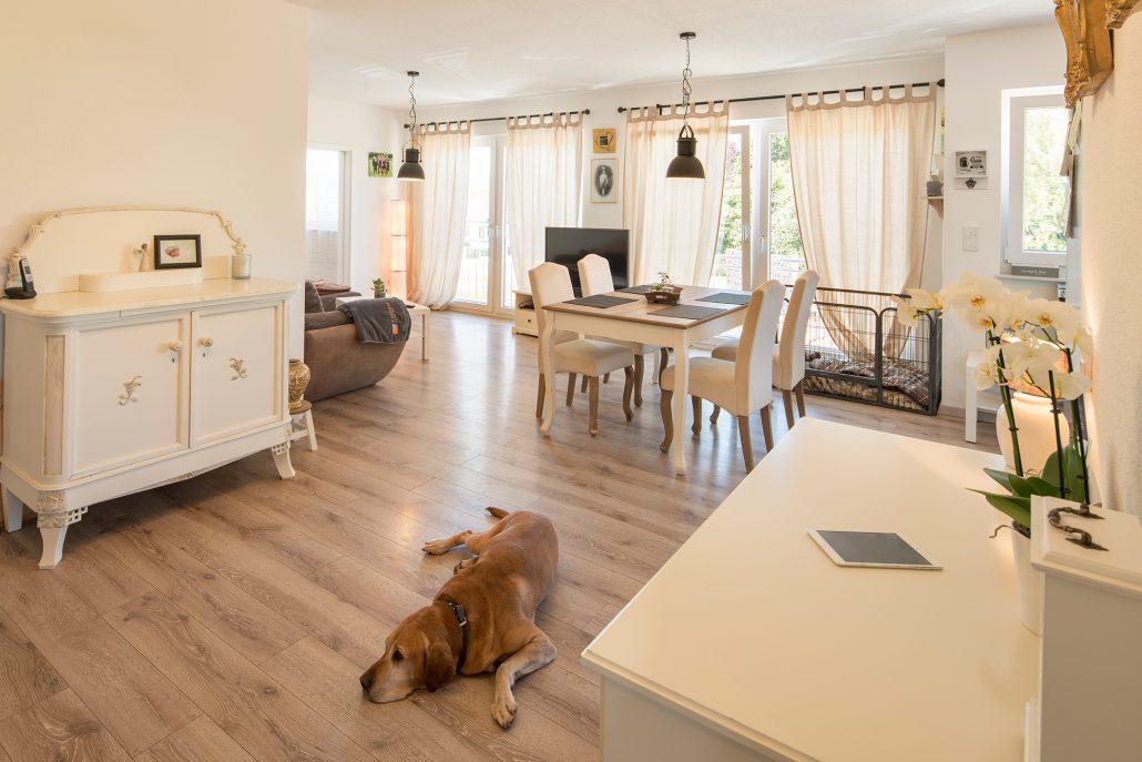 Eigenes Reich: Die Einliegerwohnung hat einen Durchgang zur Wohnung der Eltern. Hund Anton hat alles gut im Blick. (Foto: FingerHaus)